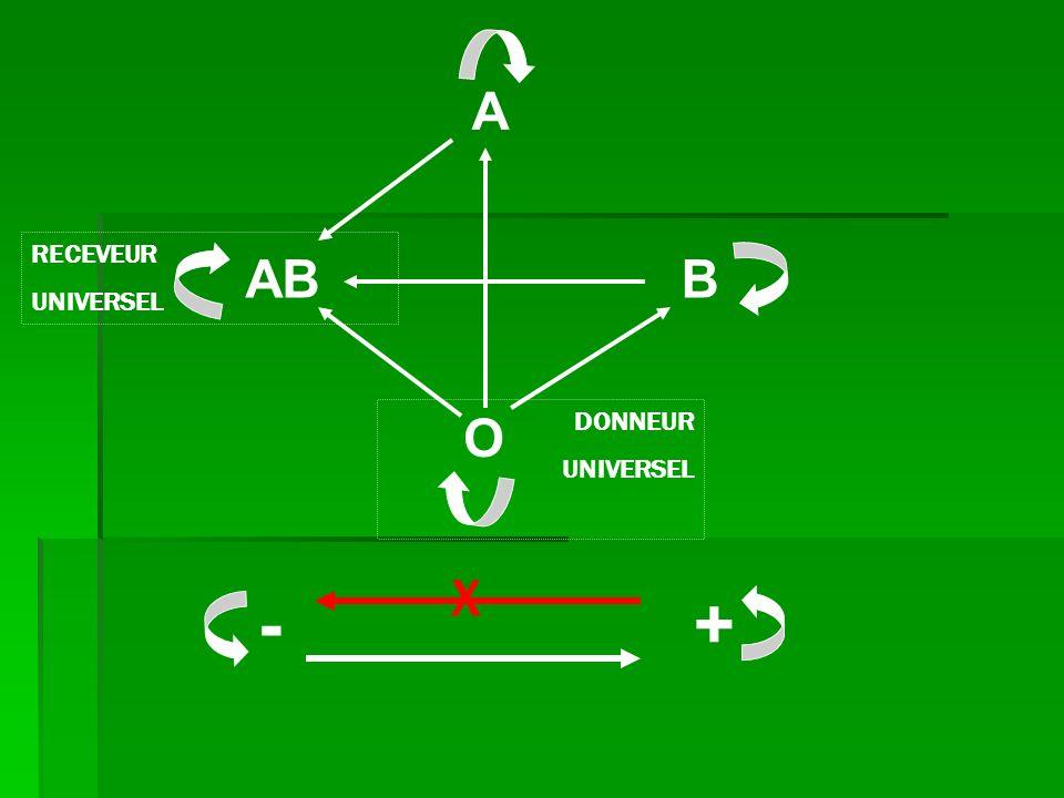 O A AB B RECEVEUR UNIVERSEL DONNEUR UNIVERSEL + - X