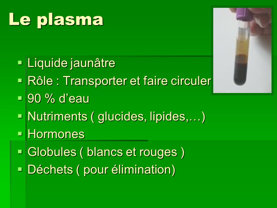 Le plasma Liquide jaunâtre Rôle : Transporter et faire circuler