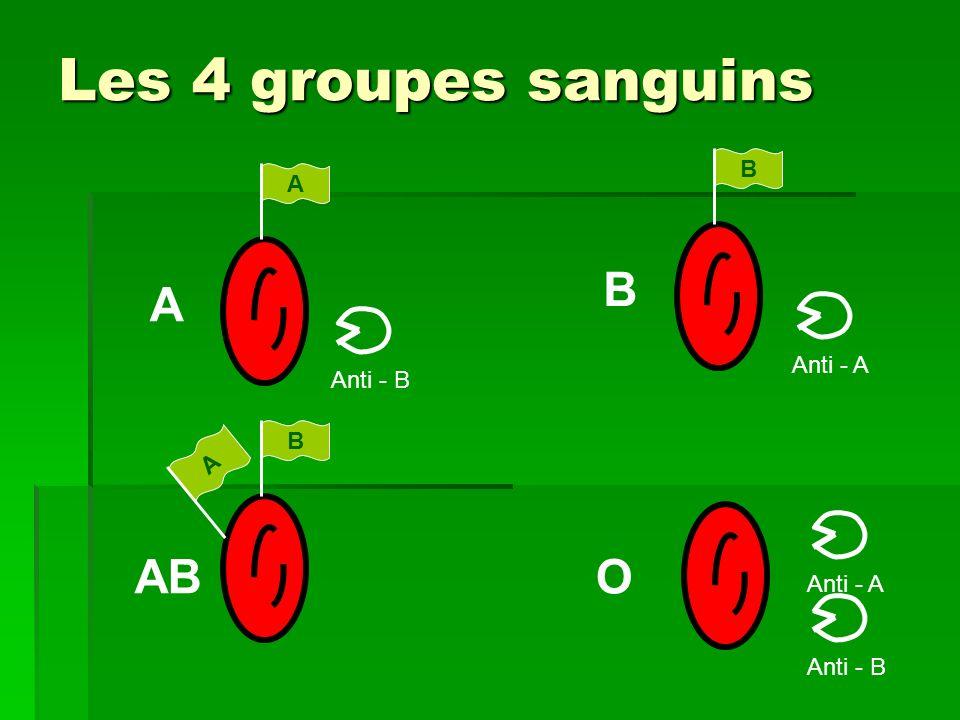 Les 4 groupes sanguins AB O B A Anti - A Anti - B B A Anti - A
