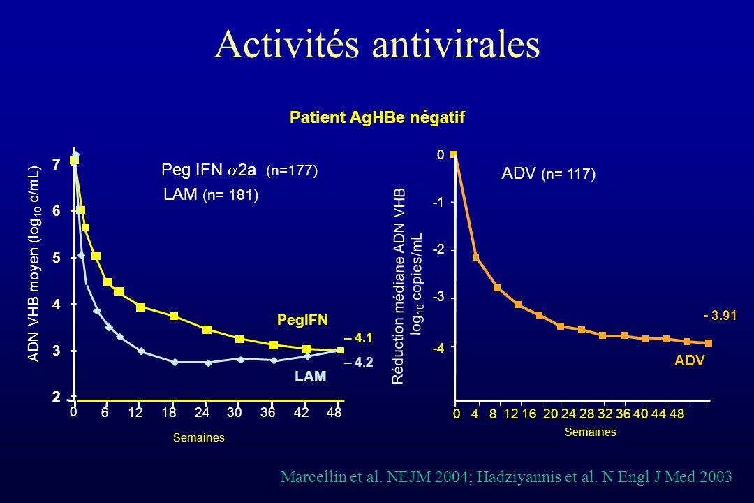 Activités antivirales