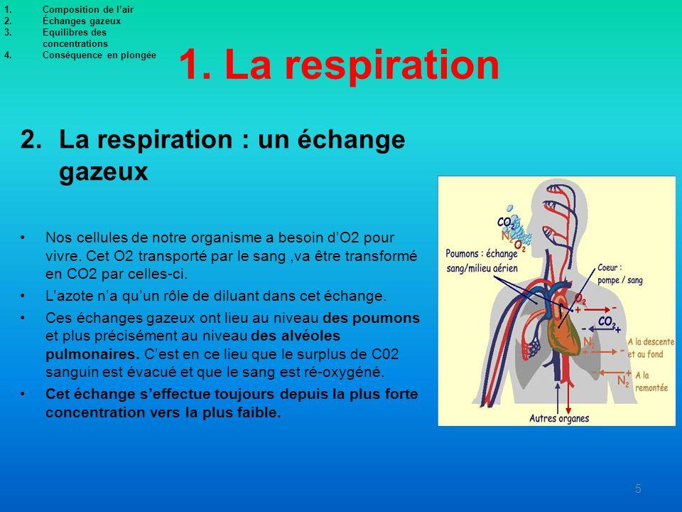 1. La respiration La respiration : un échange gazeux