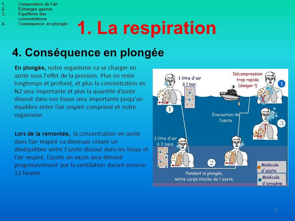 1. La respiration 4. Conséquence en plongée