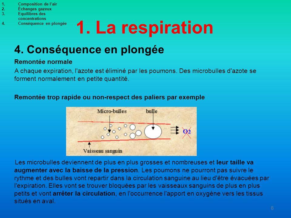 1. La respiration 4. Conséquence en plongée Remontée normale