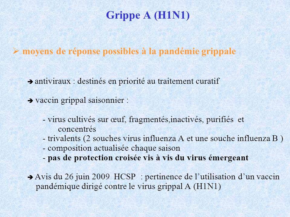 Grippe A (H1N1)  moyens de réponse possibles à la pandémie grippale