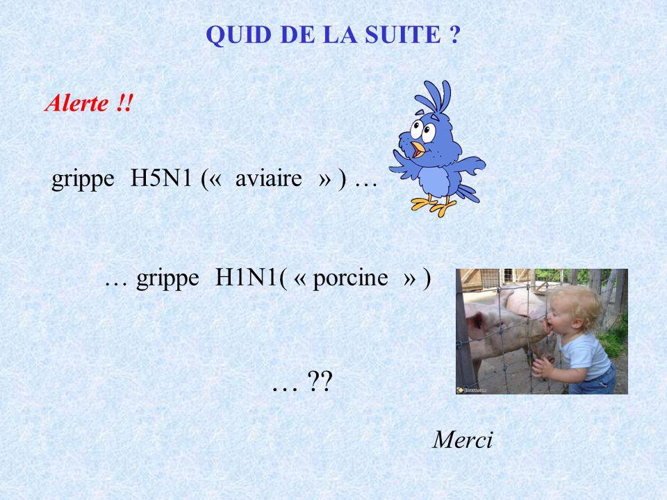 … Merci QUID DE LA SUITE Alerte !! grippe H5N1 (« aviaire » ) …