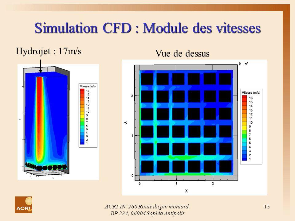 Simulation CFD : Module des vitesses