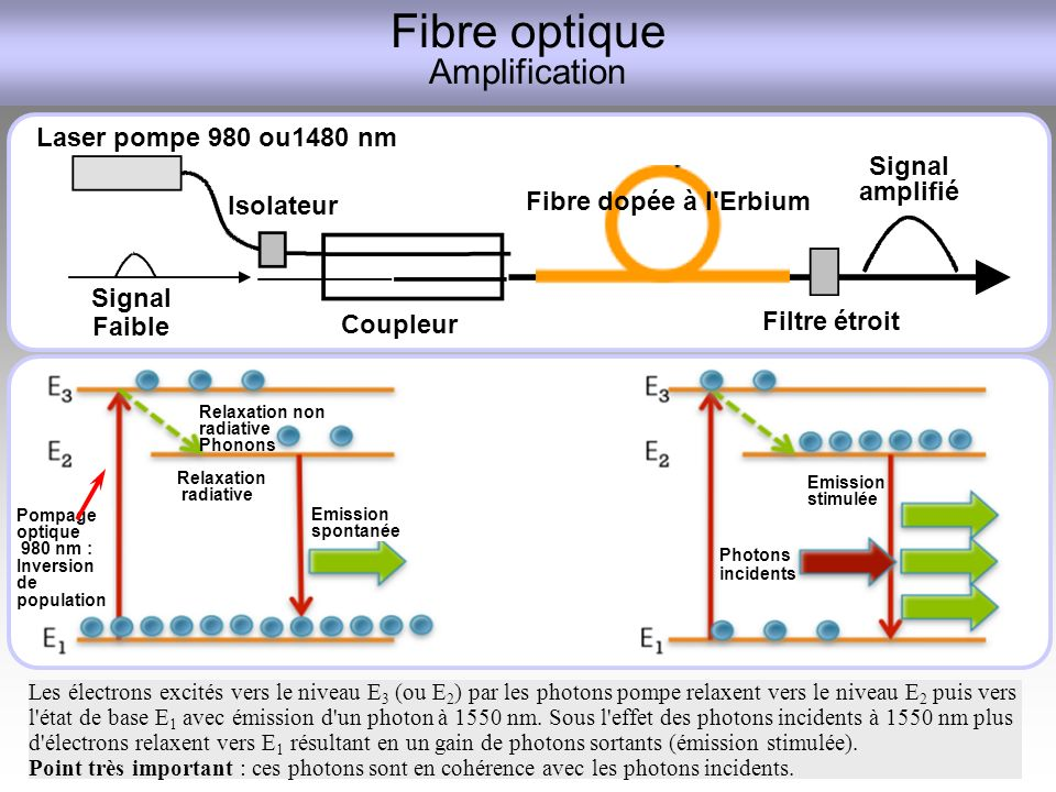 Fibre optique Amplification