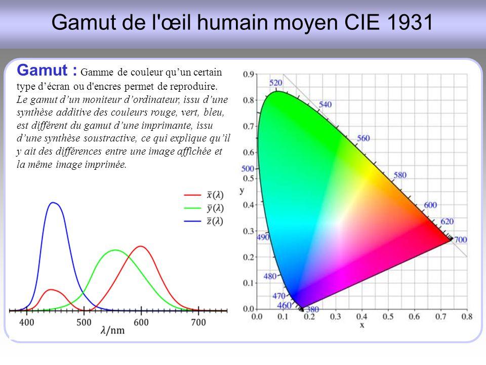 Gamut de l œil humain moyen CIE 1931