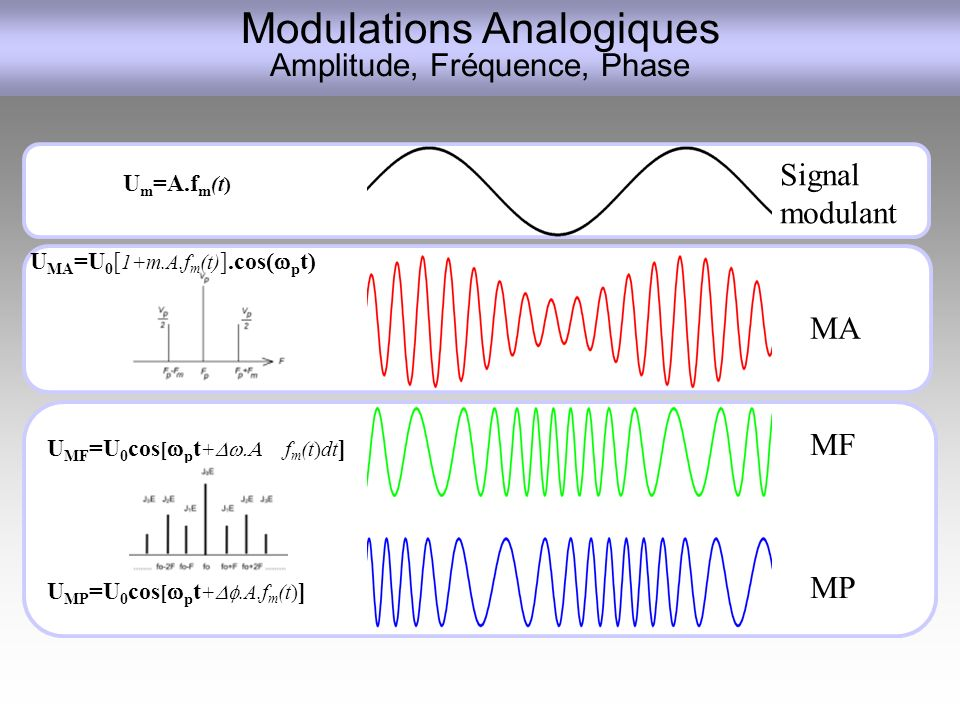 Modulations Analogiques Amplitude, Fréquence, Phase