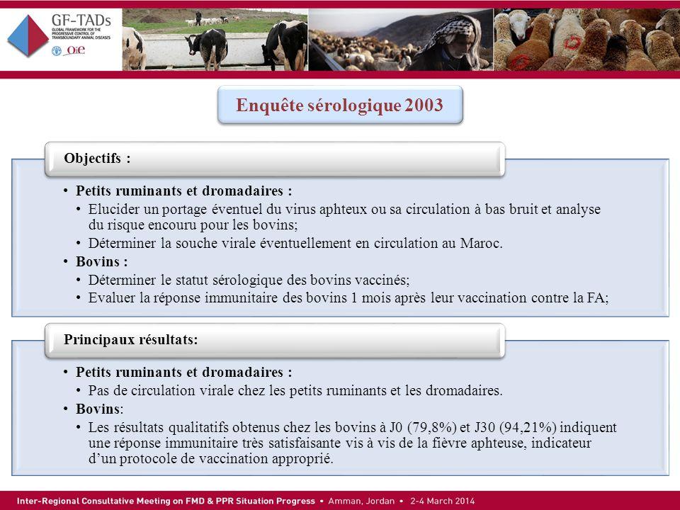 Enquête sérologique 2003 Objectifs : Petits ruminants et dromadaires :