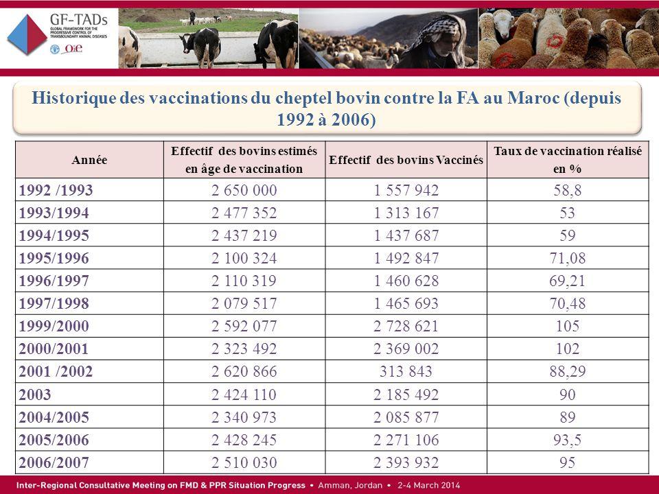 Historique des vaccinations du cheptel bovin contre la FA au Maroc (depuis 1992 à 2006)