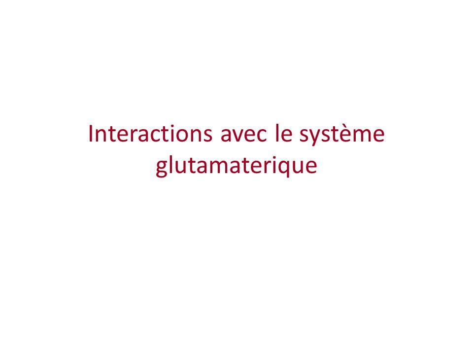 Interactions avec le système glutamaterique