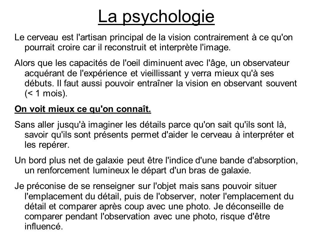 La psychologie Le cerveau est l artisan principal de la vision contrairement à ce qu on pourrait croire car il reconstruit et interprète l image.