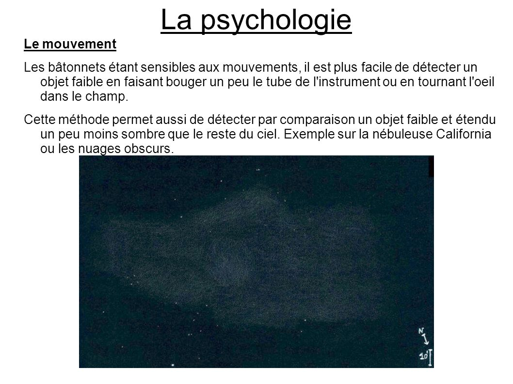 La psychologie Le mouvement