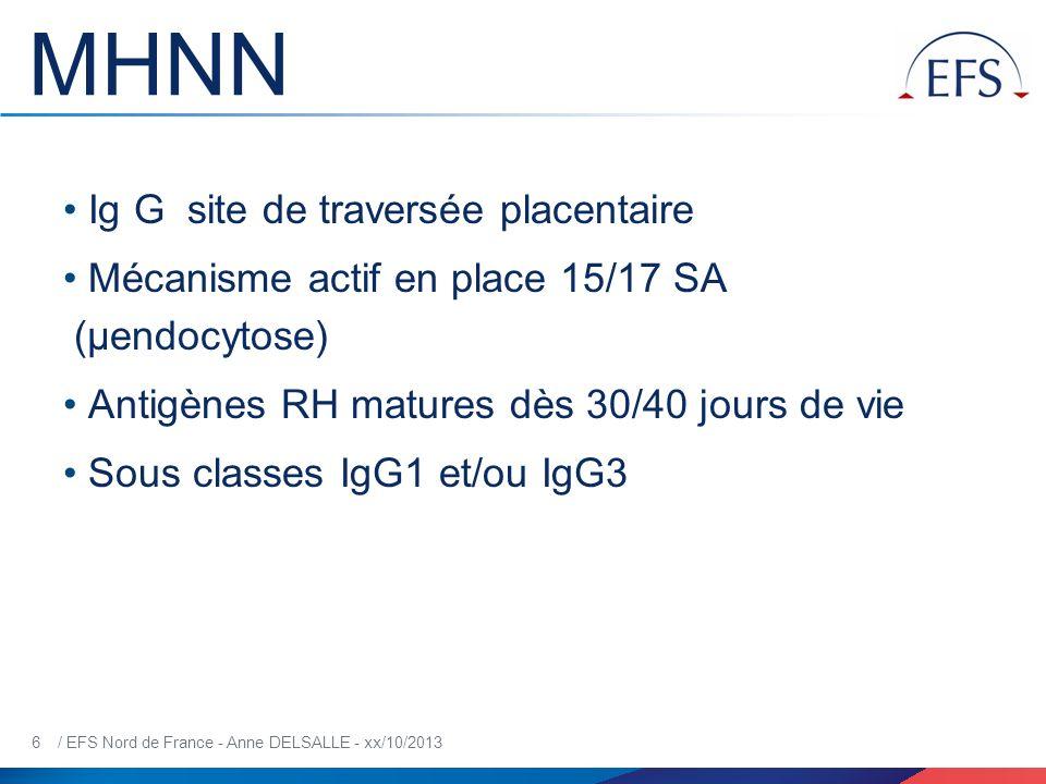 MHNN Ig G site de traversée placentaire