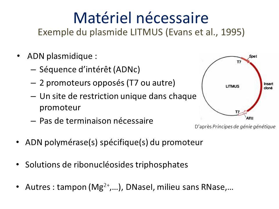 Matériel nécessaire Exemple du plasmide LITMUS (Evans et al., 1995)