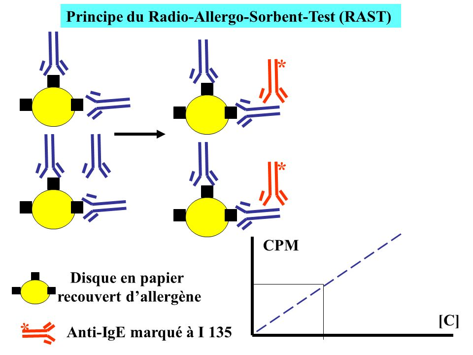 Principe du Radio-Allergo-Sorbent-Test (RAST) recouvert d'allergène