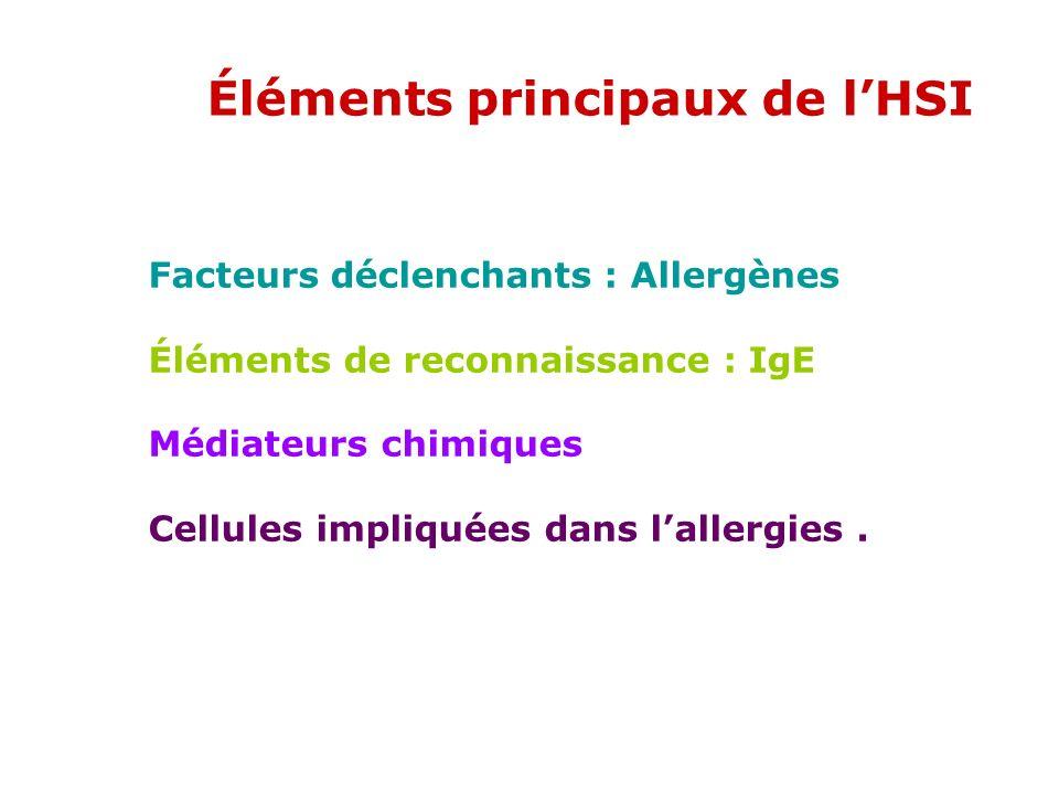 Éléments principaux de l'HSI