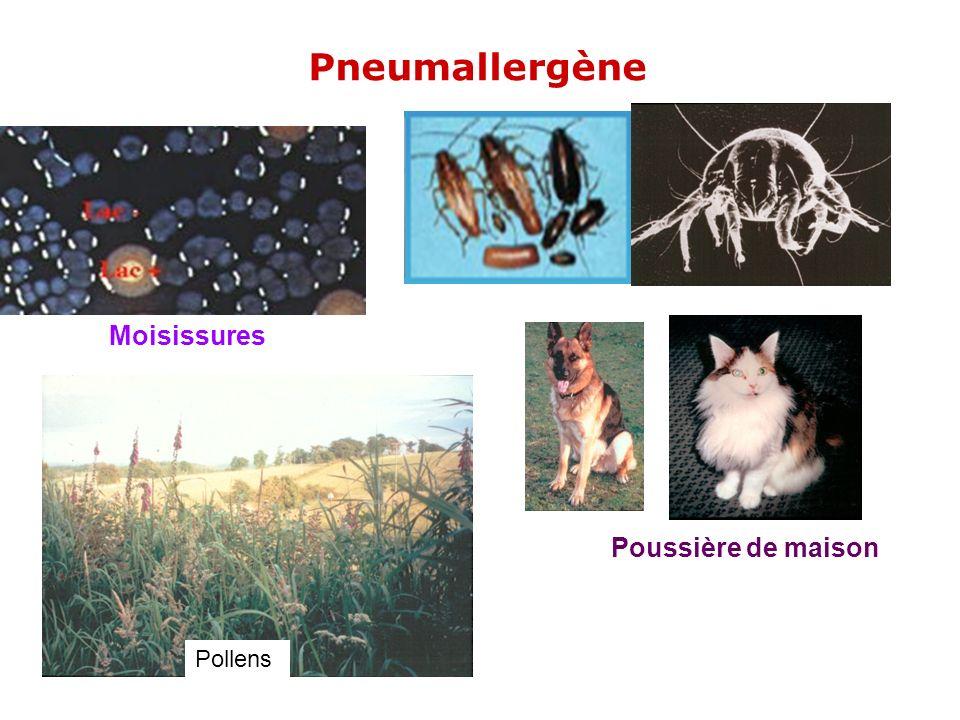 Pneumallergène Moisissures Poussière de maison Pollens