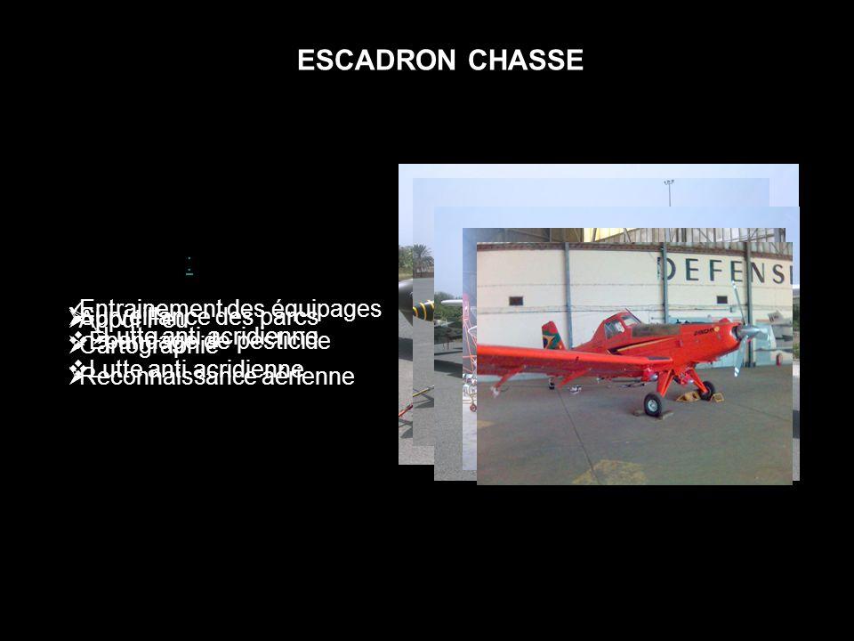 ESCADRON CHASSE Epsilon: CESSNA: Rallye Guerrier: Ipanema: