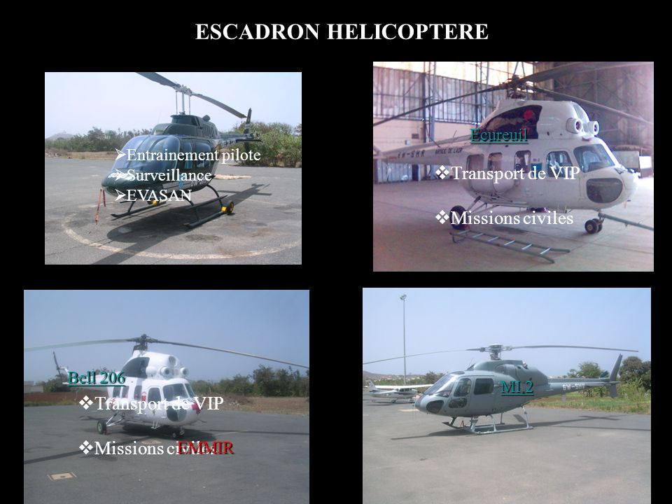 ESCADRON HELICOPTERE Transport de VIP Missions civiles