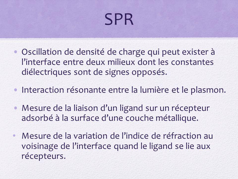 SPR Oscillation de densité de charge qui peut exister à l'interface entre deux milieux dont les constantes diélectriques sont de signes opposés.