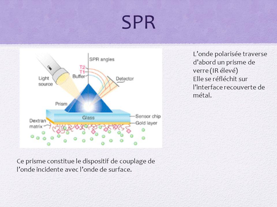 SPR L'onde polarisée traverse d'abord un prisme de verre (IR élevé)