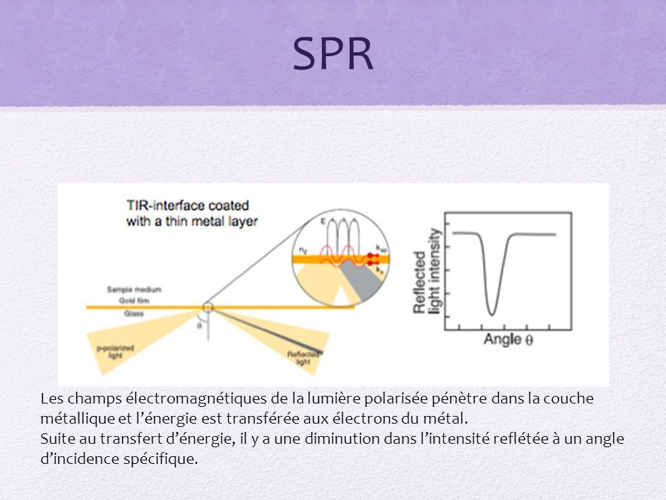 SPR Les champs électromagnétiques de la lumière polarisée pénètre dans la couche métallique et l'énergie est transférée aux électrons du métal.