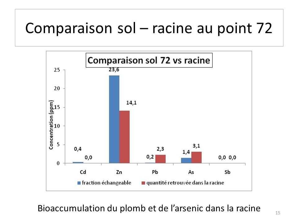 Comparaison sol – racine au point 72