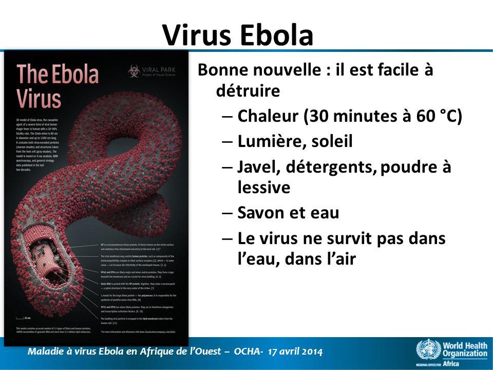 Virus Ebola Bonne nouvelle : il est facile à détruire
