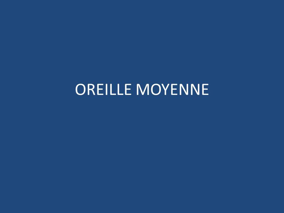 OREILLE MOYENNE