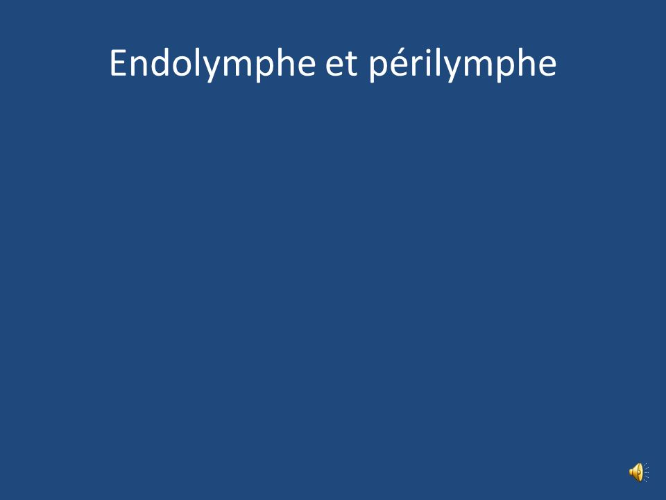 Endolymphe et périlymphe