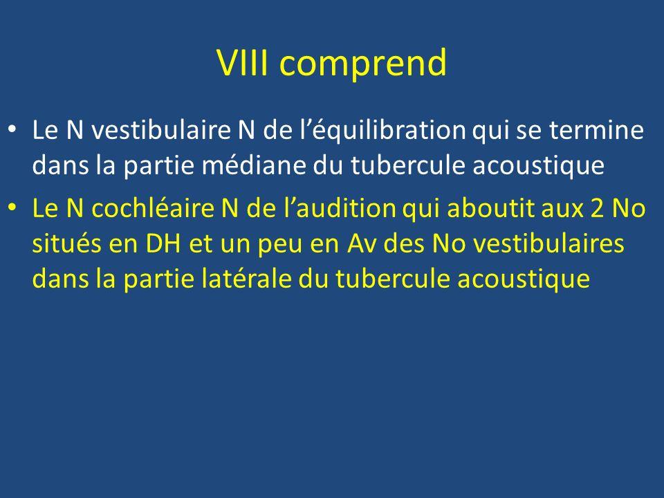 VIII comprend Le N vestibulaire N de l'équilibration qui se termine dans la partie médiane du tubercule acoustique.