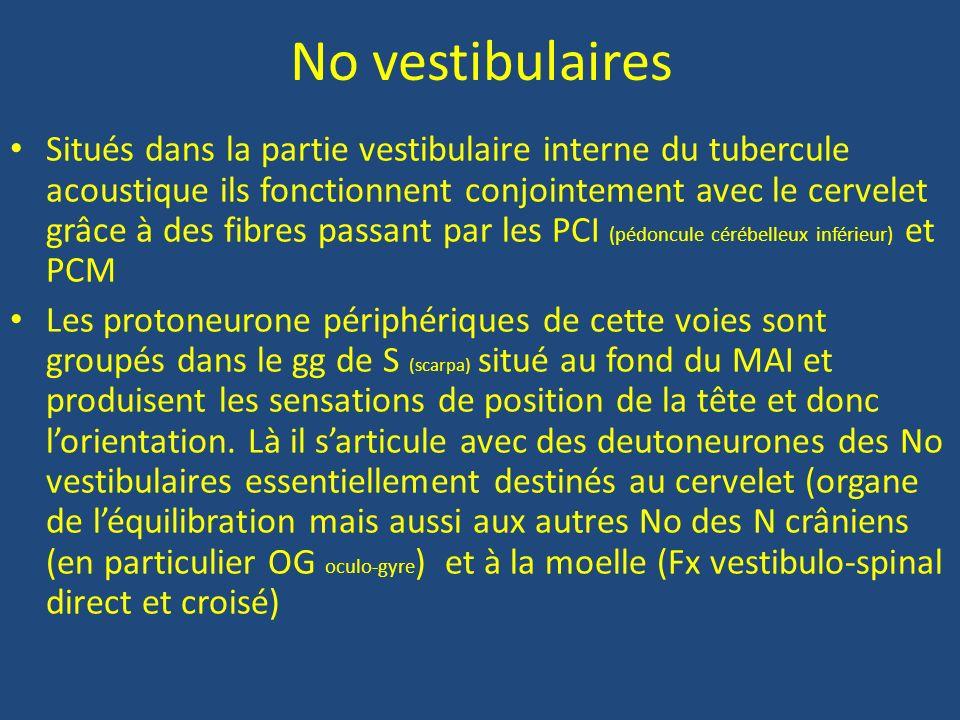 No vestibulaires