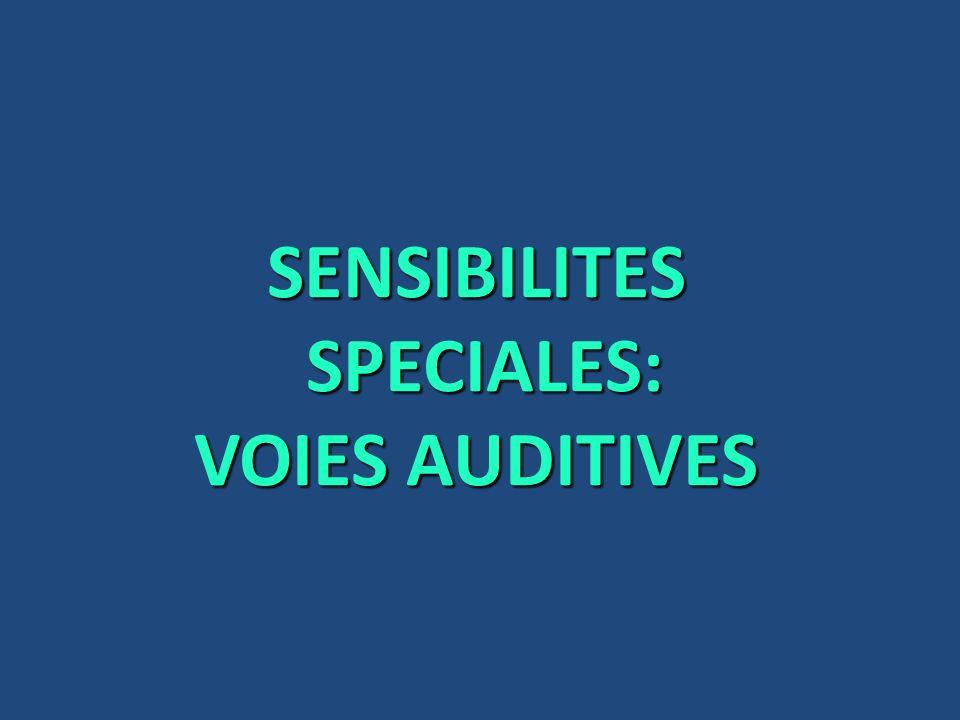 SENSIBILITES SPECIALES: VOIES AUDITIVES