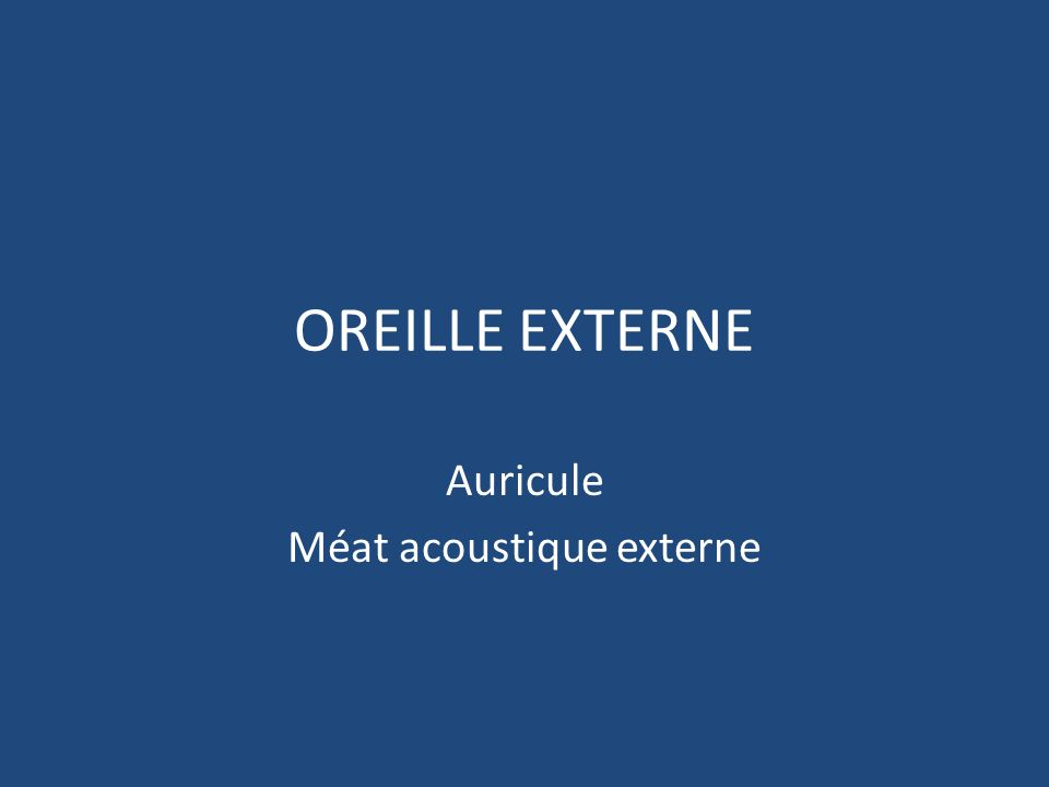 Auricule Méat acoustique externe