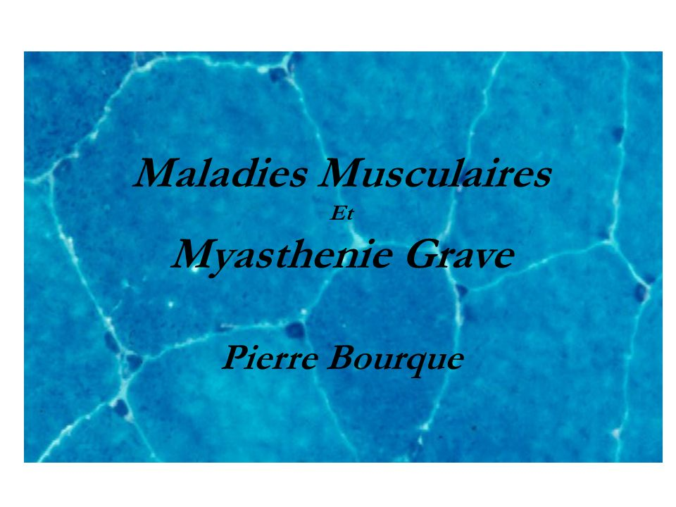 Maladies Musculaires Myasthenie Grave