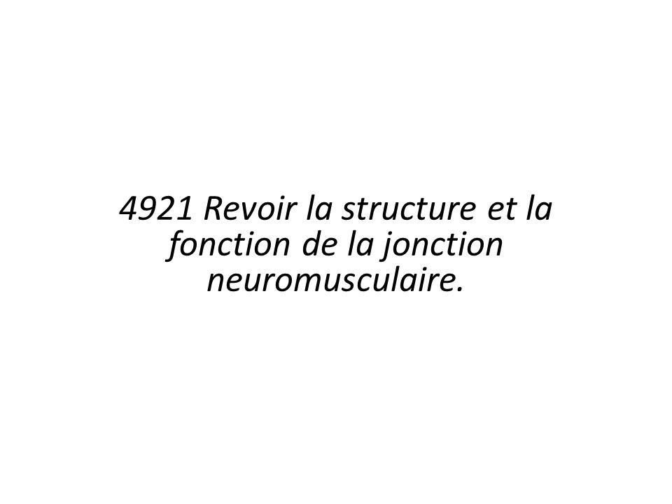 4921 Revoir la structure et la fonction de la jonction neuromusculaire.