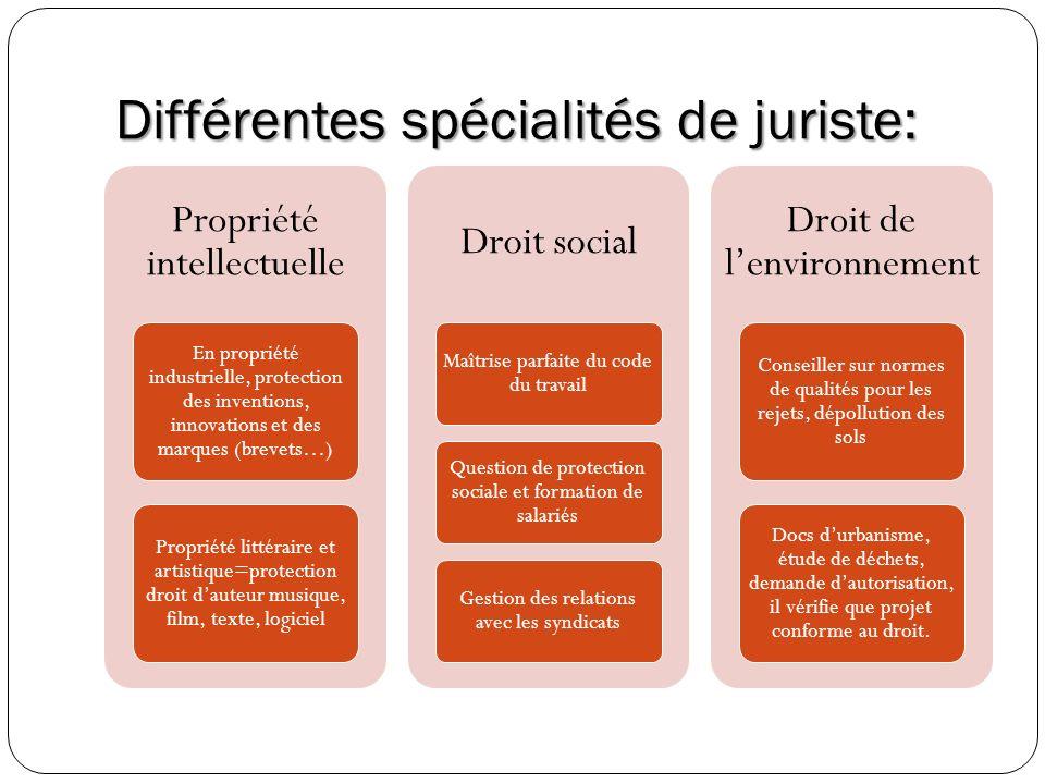 Différentes spécialités de juriste: