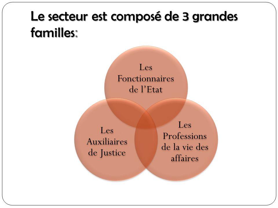 Le secteur est composé de 3 grandes familles: