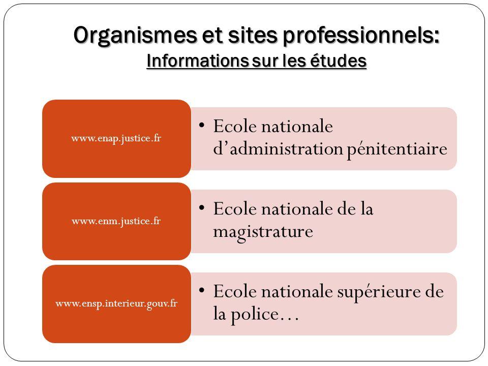 Organismes et sites professionnels: Informations sur les études