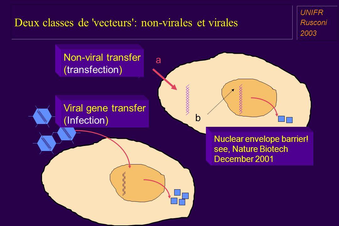 Deux classes de vecteurs : non-virales et virales