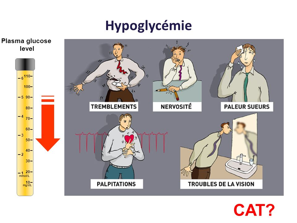 CAT Hypoglycémie Plasma glucose level 10 20 30 40 50 60 70 80 90 100