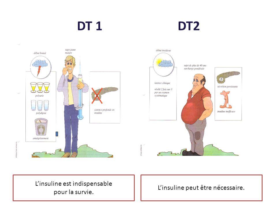 DT 1 DT2 L'insuline est indispensable L'insuline peut être nécessaire.