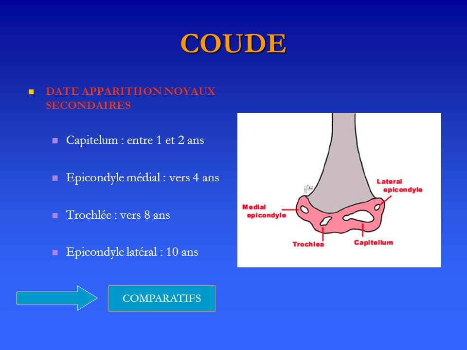 COUDE Capitelum : entre 1 et 2 ans Epicondyle médial : vers 4 ans