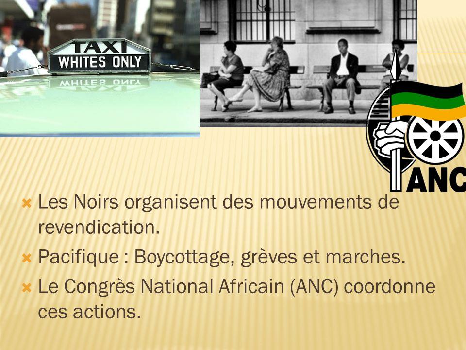 Les Noirs organisent des mouvements de revendication.