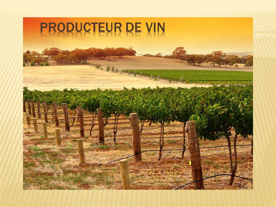 Producteur de vin