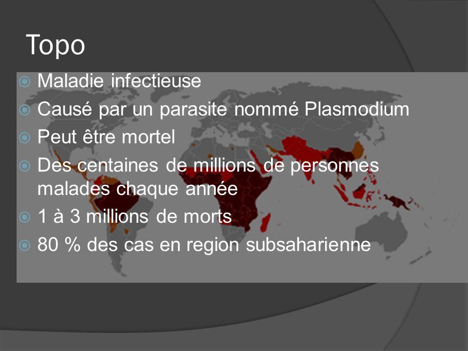 Topo Maladie infectieuse Causé par un parasite nommé Plasmodium