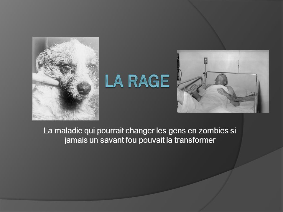 La rage La maladie qui pourrait changer les gens en zombies si jamais un savant fou pouvait la transformer.