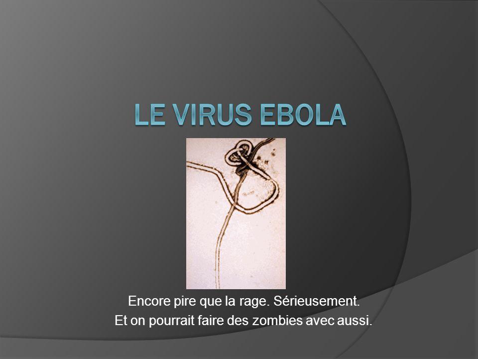 Le virus ebola Encore pire que la rage. Sérieusement.